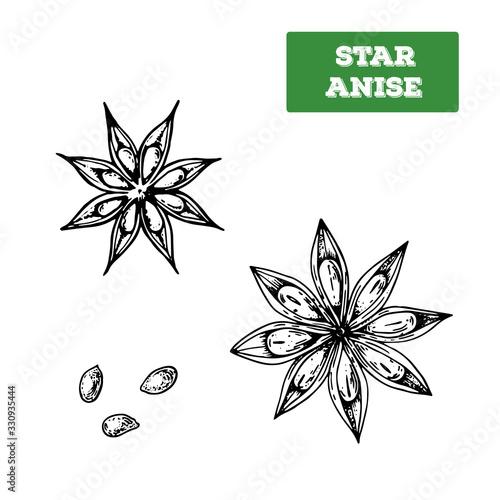 Star anise hand drawn vector illustration Wallpaper Mural