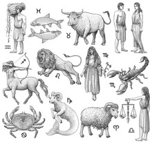 Zodiac Signs Illustration, Dra...