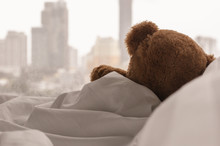 Teddy Bear Sleeping Alone On Bed With White Pillow And Blanket Facing To Window With Rain Drop In The Lonely Day.