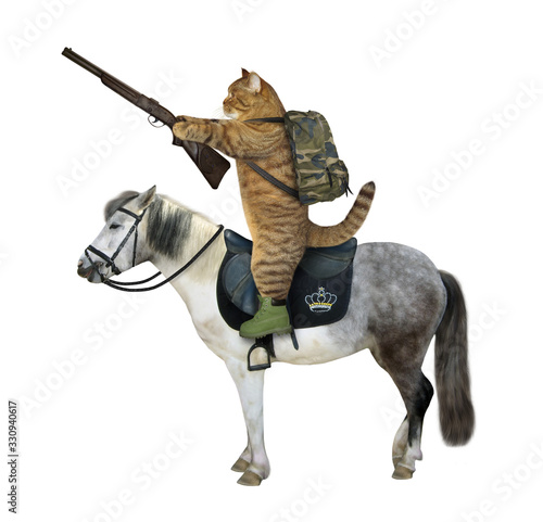 The beige cat with a rifle and a military backpack rides a gray horse Canvas Print
