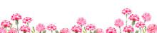 カーネーション イラスト 水彩 花 母の日 背景
