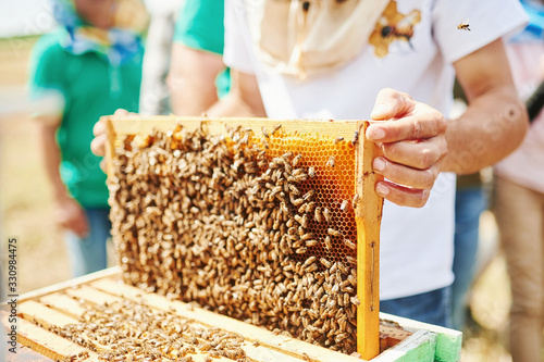 Photo Beekeeper works with honeycomb full of bees outdoors at sunny day