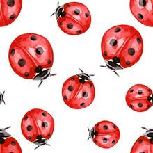 Watercolor Illustration Of Red Ink Ladybug Pattern