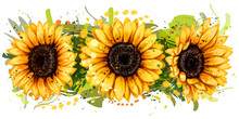 Sunflowers. Artistic, Color, D...