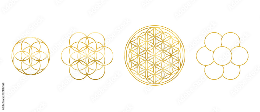 Fototapeta Golden Flower of Life, Seed and Egg of Life. Geometric figures, spiritual symbols and sacred geometry. Circles forming symmetrical flower-like patterns. Illustration over white. Vector.