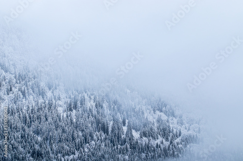 View of the forest and the mountains in the mist in winter - Morzine Valley, Fra Canvas-taulu