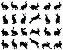 Black Silhouettes Of Rabbits O...