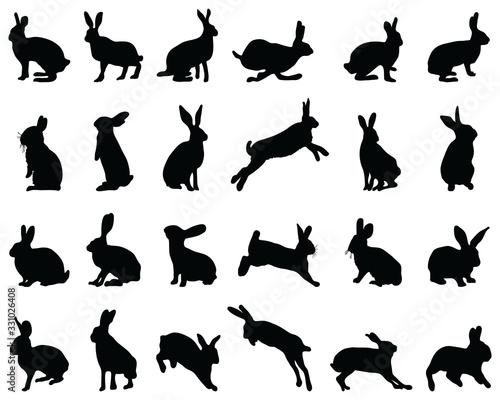 Black silhouettes of rabbits on white background Fototapet