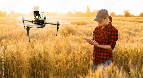 Fototapeta Woman farmer controls drone sprayer with a tablet. Smart farming and precision agriculture obraz