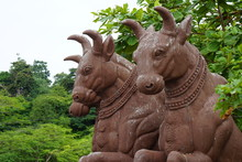 The Ancient Statues Of 3 Bison...