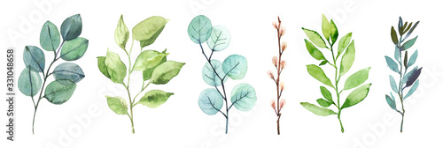 Fényképezés Watercolor hand painted botanical spring leaves and branches illustration isolat