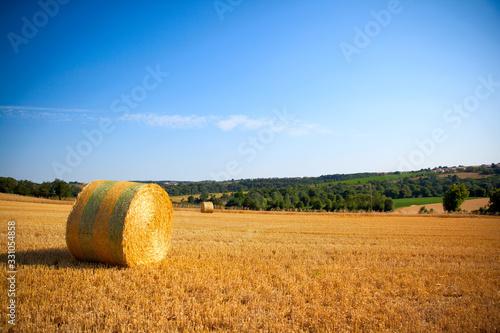 Vászonkép Meule de paille ou de foin dans un champ en été.