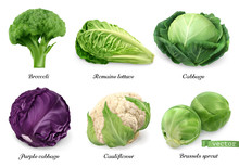 Cabbages And Lettuce, Leaf Vegetables Realistic Food Objects . Broccoli, Romaine Lettuce, Green And Purple Cabbages, Cauliflower, Brussels Sprout . 3d Vector Icon Set