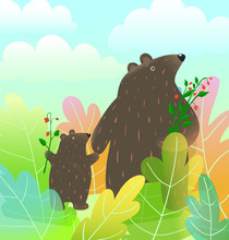 Mother Bear And Baby Cub Anima...