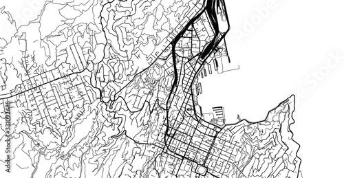 Urban vector city map of Wellington, New Zealand Wallpaper Mural