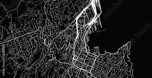 Photo Urban vector city map of Wellington, New Zealand