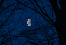 Third Quarter Moon In The Sky