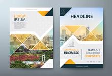 Annual Report Brochure Flyer D...
