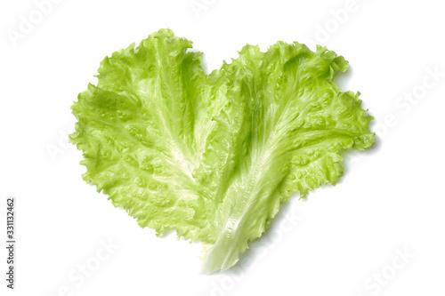 Obraz fresh green salad lettuce leaf isolated. white background - fototapety do salonu