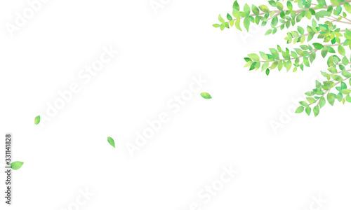 手描き 水彩 新緑の背景イラスト 02 Fotobehang