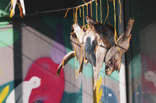 Dried Fish On The Rope. Salted...