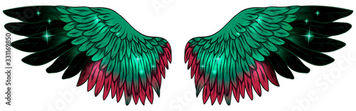 Obraz Beautiful bright glowing glittery green black red wings, vector - fototapety do salonu