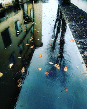Reflection Of The Street In Th...