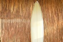 Surfboard Lean Against Dried B...