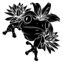 Silhouette Frog On Leaf Vector Illustration Image