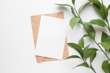Mockup Card With Plants. Invit...