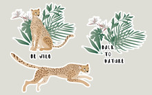 """Two Jaguars In A Thicket Of Flowers And Palm Leaves. Vector Stickers With The Inscriptions """"be Wild"""" And """"back To Nature""""."""