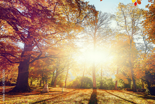 Wall mural - Awesome alpine forest in sunny day. Scenic image of fairy-tale woodland in sunlit. Touristic footpath under Colorful foliage in the autumn park in Austrian Alps. near Alpine lake. Autumn Background