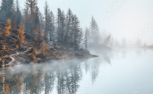 Wall mural - Magical nature landscape. Fantastic view in a foggy morning with  mountain and reflection in Banff National Park, Canada. Awecome natural background. Picture of wild area