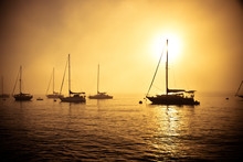 Sailboats Along Foggy Californ...