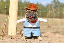 Funny French Bulldog Dog Weari...
