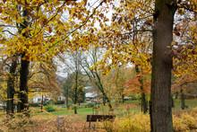 Spaziergang Im Herbst Durch Ei...