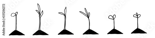 Seedlings in hand drawn doodle style. Garden vector illustration. Isolated on white.