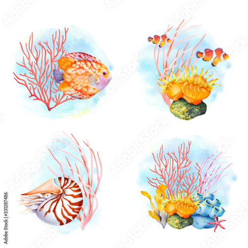 Fish and coral compositions set. Tropical ocean reef wildlife. Watercolor illustration.