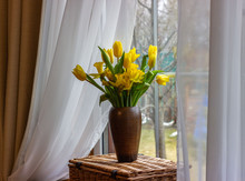 Bouquet Of Yellow Tulips And D...