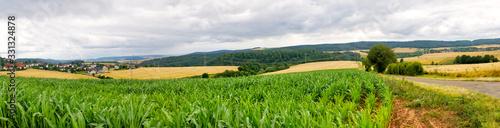 Obraz Nature meadows - fototapety do salonu