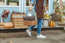 Woman Florist In Work Clothes Carrying Plants