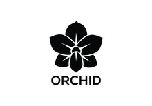 Orchid Vector Flower Isolated ...