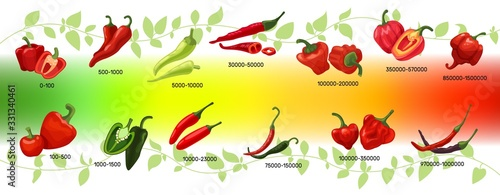 Scoville scale of chilli peppers infographic vector illustration Canvas
