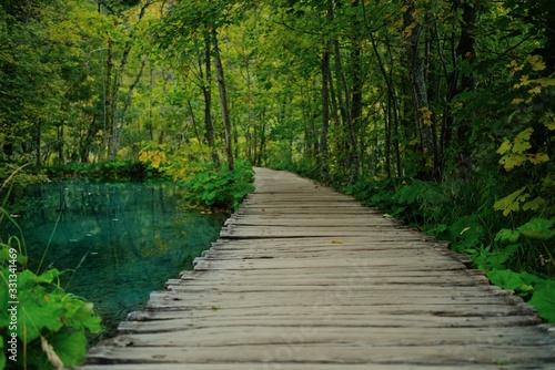 Fototapety, obrazy: wooden bridge in forest