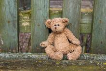 A Toy Teddy Bear Sits On A Ben...