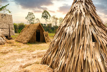 Straw Hut Or Local Bungalow Ca...