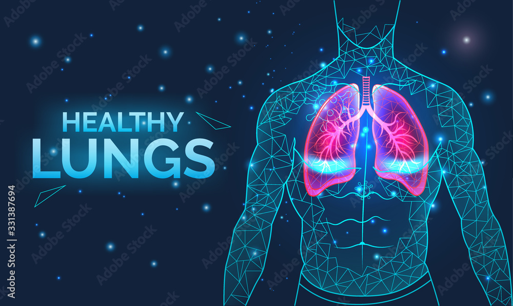 Fototapeta Healthy lungs, respiratory system, disease prevention, banner with human body organs, anatomy, breathing and healthcare, vector illustration.