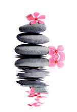 Zen Stone With Flower In Spa C...