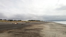 Blick Auf Den Weitem Strand Von Amberley Mit Einem Größen Ast, Der Aus Dem Sand Ragt.