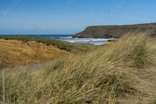 Obraz na plátně Sand dunes at Widemouth Bay near Bude in Cornwall